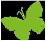 vlinder-vrielinktuinlink